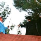 Duello sui tetti