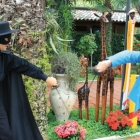 Zorro in duello